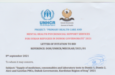 """ANNEX C FINANCIAL OFFER""""Supply of medicines, consumables and laboratory tests to Domiz 1, Domiz 2, Akre and Gawilan PHCs, Duhok Governorate, Kurdistan Region of Iraq"""" 2021"""